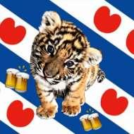 Beerenburg Tigers