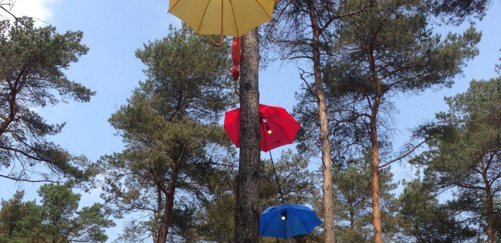 De paraplu's bleken niet nodig.