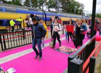 Pinkpop 2019 - Landgraaf - roze loper